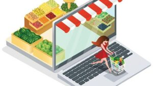 What Strategy Made Online Grocery Delivery Script Successful